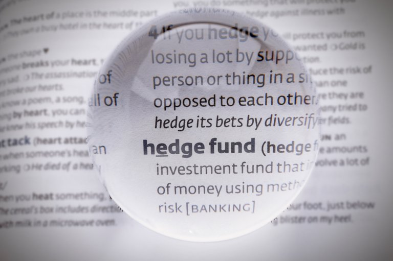 Hedge Fund Definition